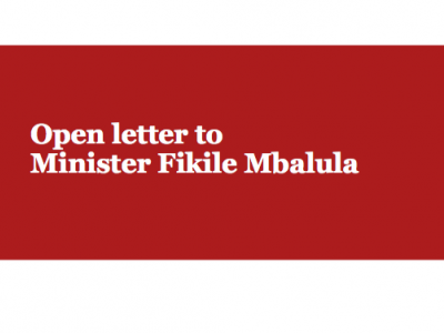 Open Letter to Minister Fikile Mbalula